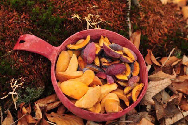 ovocie Brix